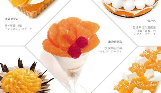 カフェコムサから「オレンジの日」ケーキが登場!柑橘類を使った各店舗オリジナルケーキ【2019年最新版】